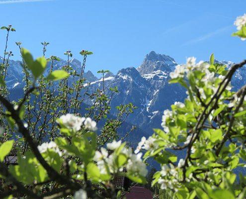 Sommerferien im Karwendel
