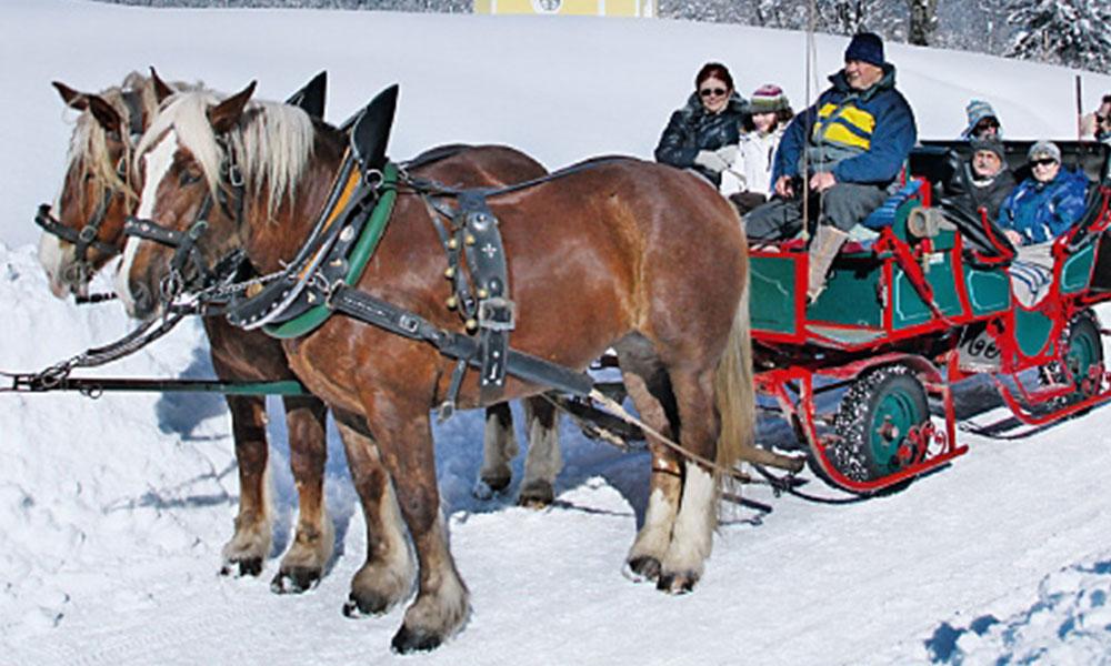Familienspaß im Winter - Kutschfahrten